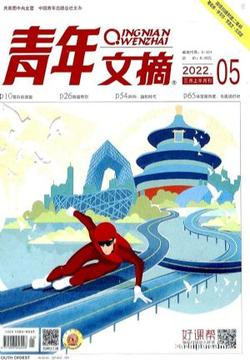 青年文摘(1年共24期)(杂志订阅)