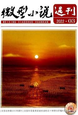 微型小说选刊(1年共24期)(大发快3官方网订阅)