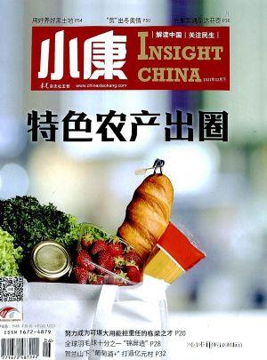 小康(1年共24期)(杂志订阅)