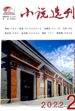 小说选刊(1年共12期)(杂志订阅)