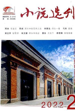 小说选刊(半年共6期)(杂志订阅)
