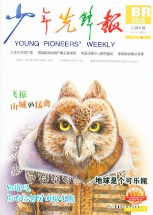 停用 少年先锋报(三四年级版)(1年共12期)(杂志订阅)