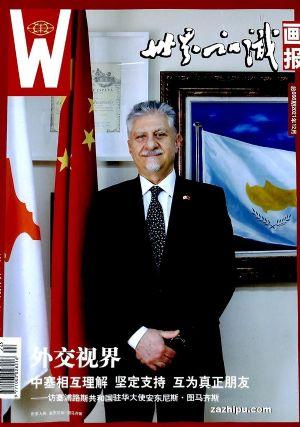 世界知识画报 艺术视界(1年共12期)(杂志订阅)