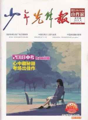 先锋小作家初中版(1年共12期)(龙8订阅)