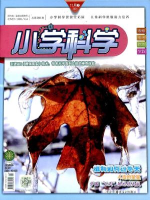 小学科学(半年共6期)(杂志订阅)