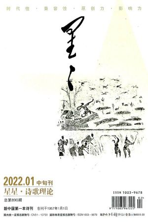 星星诗刊诗歌理论(中旬刊)(1季度共3期)(杂志订?#27169;?