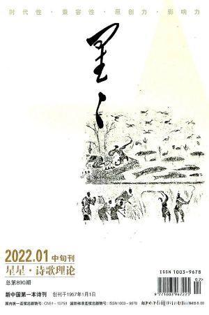 星星诗刊诗歌理论(中旬刊)(1季度共3期)(杂志订阅)