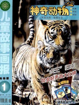 包邮 动物世界(1年共12期)(杂志订阅)
