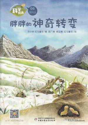 科学绘本(1年共12期)(杂志订阅)