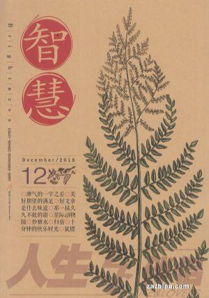智慧(黑白版)(半年共6期)(杂志订阅)