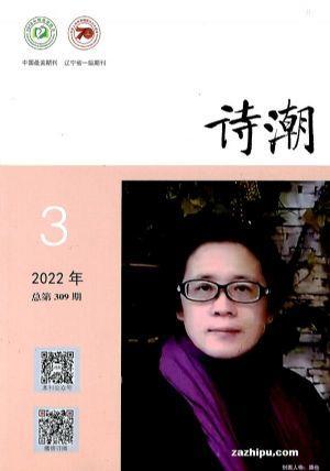 诗潮(1年共12期)(杂志订阅)