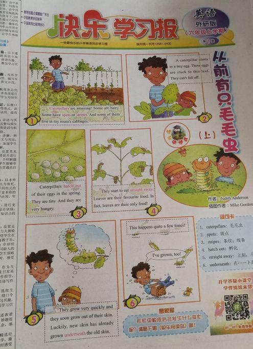 快乐学习报英语外研版六年级(1年共52期)(杂志订阅)