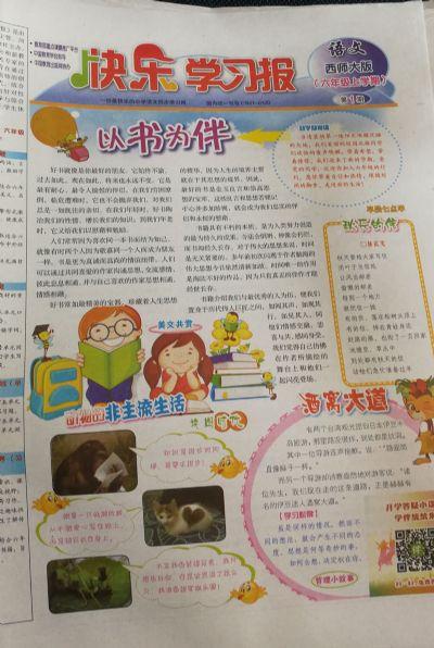 快乐学习报语文西师大六年级(1年共48期)(杂志订阅)