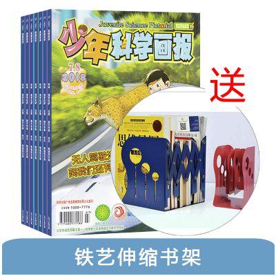 少年科學畫報(1年共12期)+送鐵藝伸縮書架