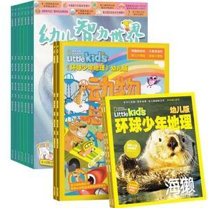 环球少年地理幼儿版(1年共12期)+幼儿智力世界(1年共12期)(杂志订阅)