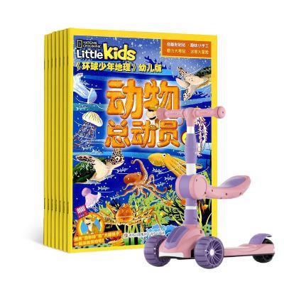 环球少年地理幼儿版�1年共12期�+送可充电款儿童对讲机�?#27426;圍?