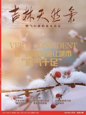 吉林天然气(1年共12期)(杂志订阅)