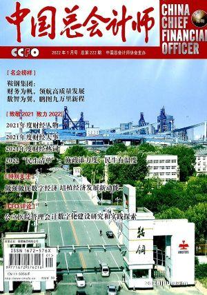 中国总会计师(1年12期)(杂志订阅)