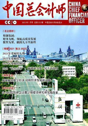 中國總會計師(1年12期)(雜志訂閱)