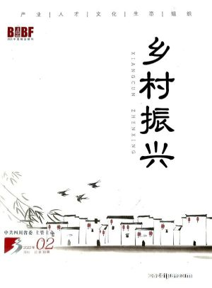 乡村振兴(1年共12期)(杂志订阅)