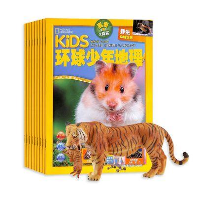 包邮 KiDS环球少年地理(1年共12期)+送仿真动物模型