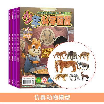 少年科學畫報(1年共12期)+送仿真動物模型