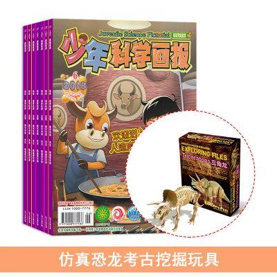 少年科學畫報(1年共12期)+送仿真恐龍考古挖掘玩具