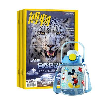 小哥白尼军事科学画报(1年共12期)+送手工制作拼装3d立体船模