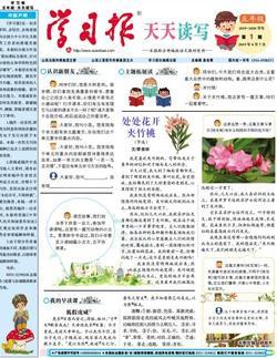 学习报小学语文天天读写五年级(1年共40期)(杂志订阅)