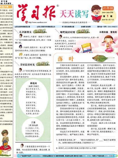 学习报小学语文天天读写六年级(1年共40期)(杂志订阅)