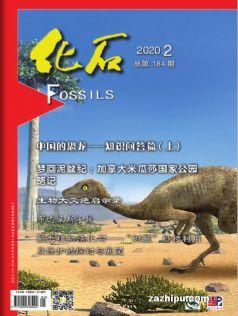 化石(中国科学院)(1年共4期)