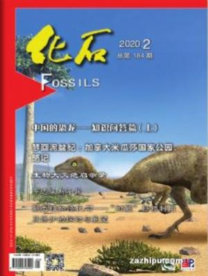 化石(中國科學院)(1年共4期)