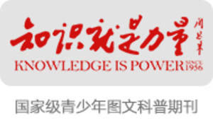 知识就是力量品牌