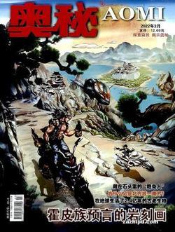 奥秘(1年共12期)(杂志订阅)